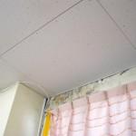室内調査(壁際雨染み)