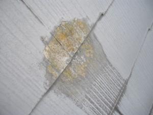 屋根塗装の現状