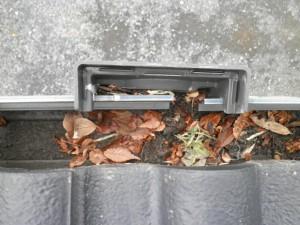 雨樋のツマリ(落とし口)