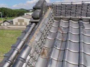 瓦屋根の補修作業(栃木市)