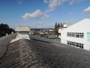 ビフォー。石綿スレート波板屋根。