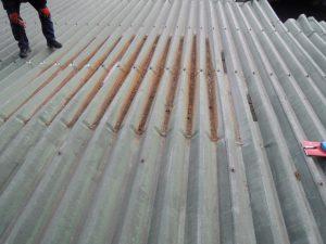 屋根上で雨漏り調査中